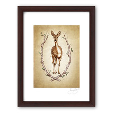 Prints : Fallow Doe, 11X14 Framed