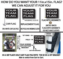 NFL Detroit Lions 11in x 15in Golf Cart or Car Flag