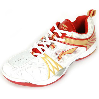 "Evergreen ""TITAN"" Badminton Shoe AYTG068-1- Unisex"