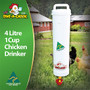 4 Litre Single Cup Chicken Waterer. The best automatic waterer for small flocks, this system is designed to keep water fresh and prevent algae. Made in Australia by Dine a Chook, our Drinkers stay cleaner and last longer.