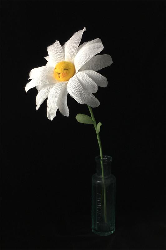Daisy Flower Bun 1 by plushPLAY