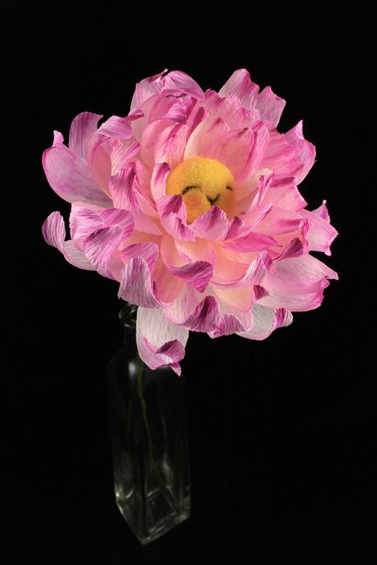 Pink Dahlia Flower Bun 2 by plushPlay