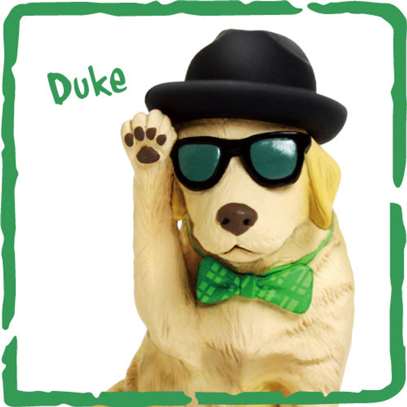 Fancy Pets : Ryan's Favorite Dog Case of 12