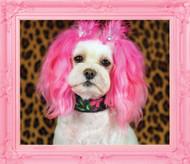 Princess Pink Frame Wall Graphic