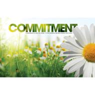 Commitment Daisy