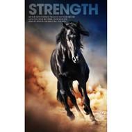Strength Mustang