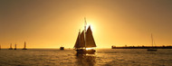 Standard Photo Board: Sailboat Key West - AMER