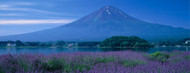 Standard Photo Board: Mount Fuji Japan - AMER
