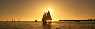 Extra Large Photo Board: Sailboat Key West - AMER - INDY