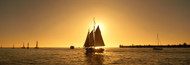 Standard Photo Board: Sailboat Key West - AMER - INDY