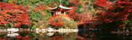 Extra Large Photo Board: Daigo Temple Kyoto, Japan - AMER - INDY
