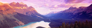 Extra Large Photo Board: Peyto Lake Alberta Canada - AMER - INDY