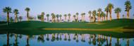 Standard Photo Board: Golf Course Marriott Palms AZ - AMER - INDY