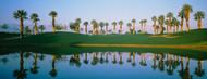 Standard Photo Board: Golf Course Marriott Palms AZ - AMER