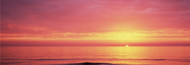 Extra Large Photo Board: Sunset Over The Sea Venice Beach - AMER