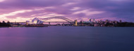 Standard Photo Board: Sydney Skyline with Purple Sky - AMER