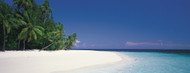 Standard Photo Board: White Sand Beach Maldives - AMER