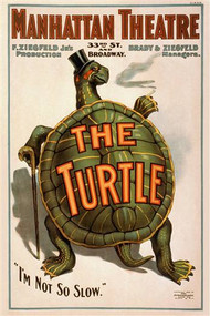 Manhattan Theatre Production The Turtle