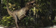 A Mighty Tyrannosaurus Rex Hunts For Prey In A Dense Jungle