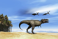 Pterodactyls Fly Over A Beastly Tyrannosaurus Rex