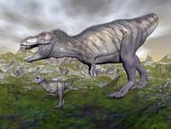 Tyrannosaurus Rex Mother And Offspring