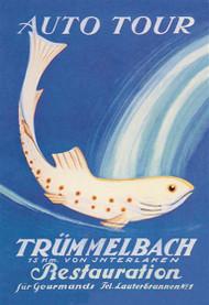 Auto Tour Trummelbach