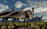 Hadrosaurid Duckbill Dinosaurs Use Soundwaves To Defend A Tyrannosaurus Rex II