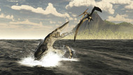A Tylosaurus Jumps Out Of The Water, Attacking A Pteranodon
