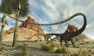 Two Diplodocus Dinosaurs Search For Food In A Desert Landscape