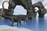 Diplodocus Dinosaurs Wade Through Shallow Waters Of A Beautiful Seashore