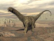 Large Argentinosaurus Dinosaur Walking On Rocky Terrain