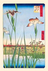 Iris Garden at Horikiri by Hiroshige