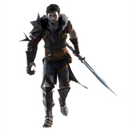 Dragon Age Wall Graphics: Hero