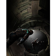 Dead Space Wall Graphics: Dead Space: Zero Gravity
