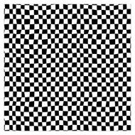 Caleb Gray Studio: Checkered Flag Wall Tile