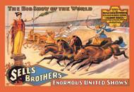 Ben Hur Chariot Races
