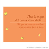 Le Petit Prince 'You Came From a Star'