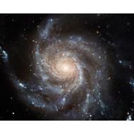 Spiral Galaxy 1