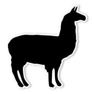 Begsonland Llama