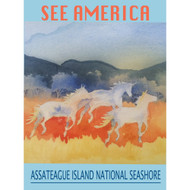 Assateague Island National Seashore by Christine Lathrop