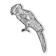 Begsonland Parrot Doodle Decal