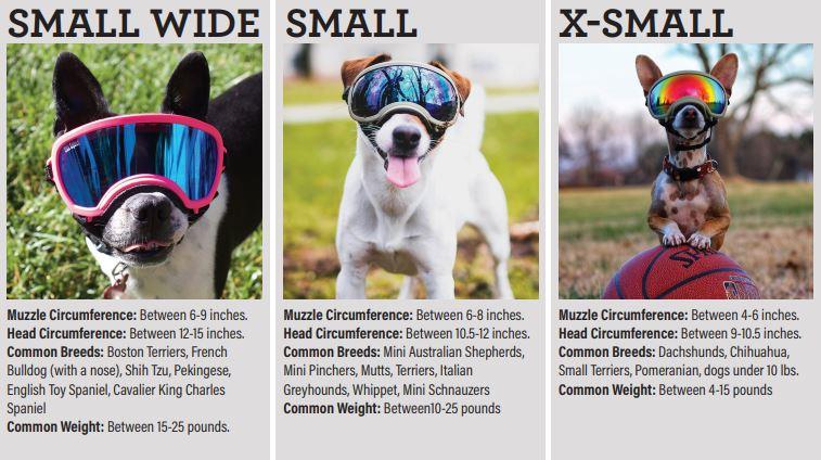 rexspecs-size-xsmall-small-smallwide.jpg