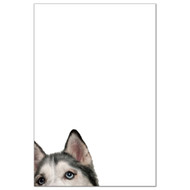 Siberian Husky Dog Pack 1