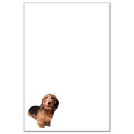 Dachshund (Wire Haired) Dog Pack 1