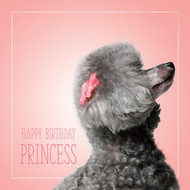 Ashley's Happy Birthday Princess Card