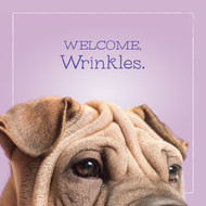 Mimosa's Wrinkles Happy Birthday Card