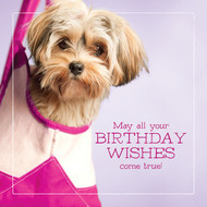 Ruby's Birthday Wishes Card