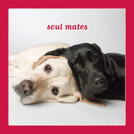 Labrador Retriever Soul Mates Love Card