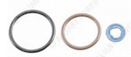 G2.9 Injector Seal Kit - AP0026