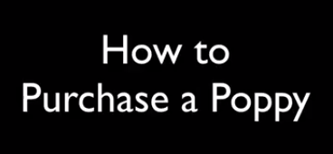 how-to-purchase-a-poppy.png